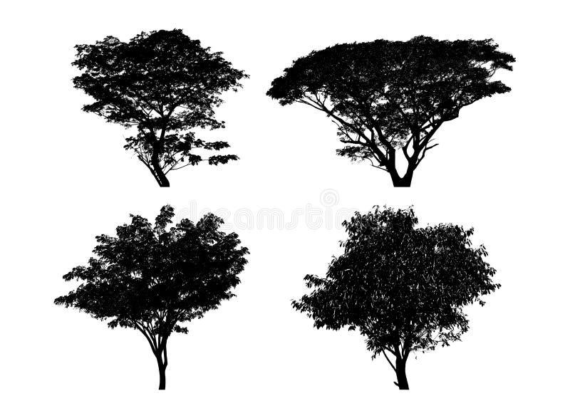 silhouettes den svarta illustrationen f?r bakgrund treevektorwhite fotografering för bildbyråer