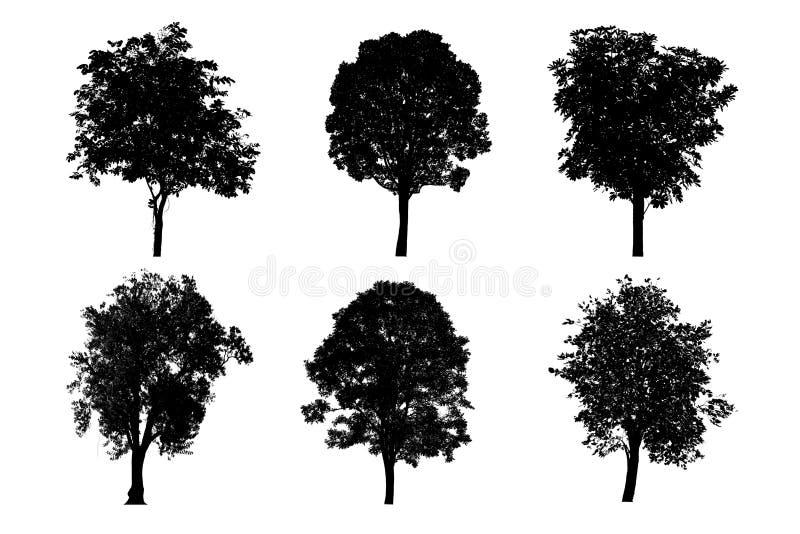silhouettes den svarta illustrationen f?r bakgrund treevektorwhite arkivfoto