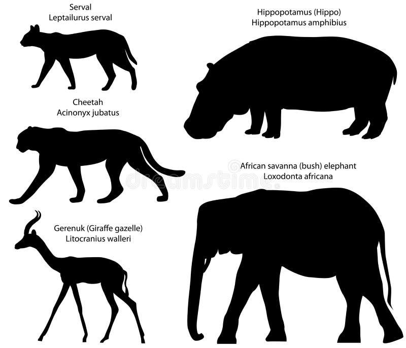 Silhouettes des animaux du serval de l'Afrique, guépard, gerenuk, hippopotame, éléphant illustration libre de droits