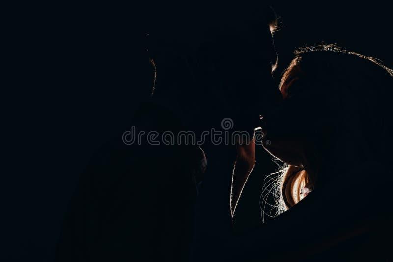 silhouettes des baisers hétérosexuels passionnés de couples photo stock