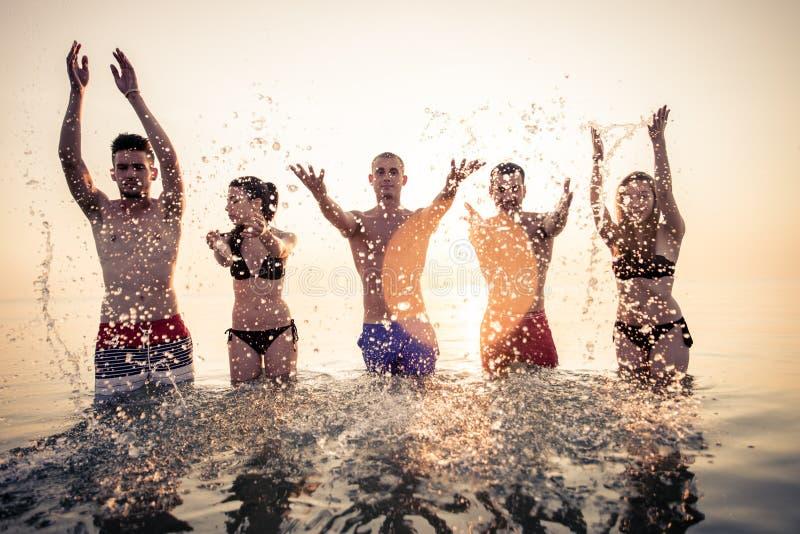 Silhouettes des gens heureux photos libres de droits