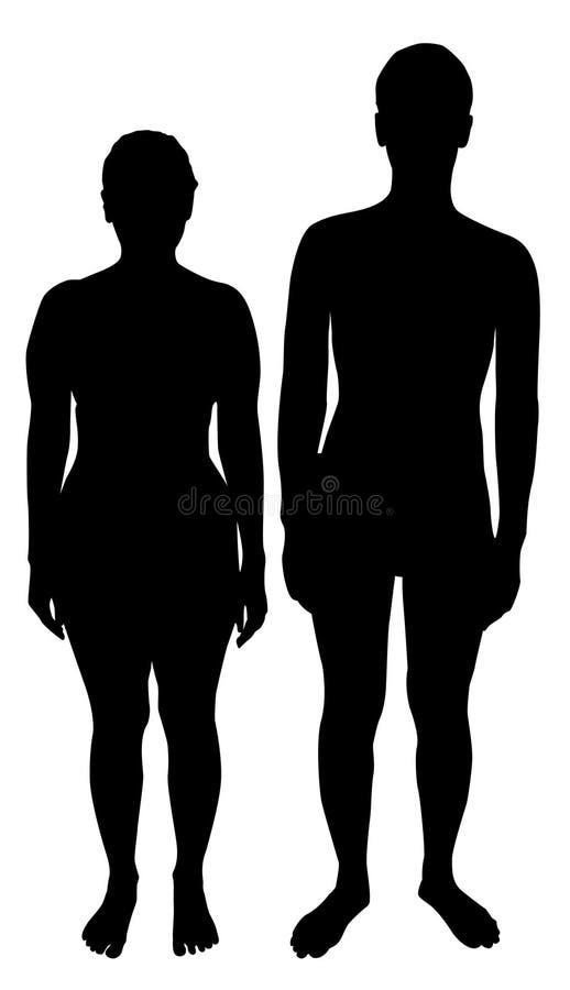 Silhouettes des hommes et des femmes illustration stock