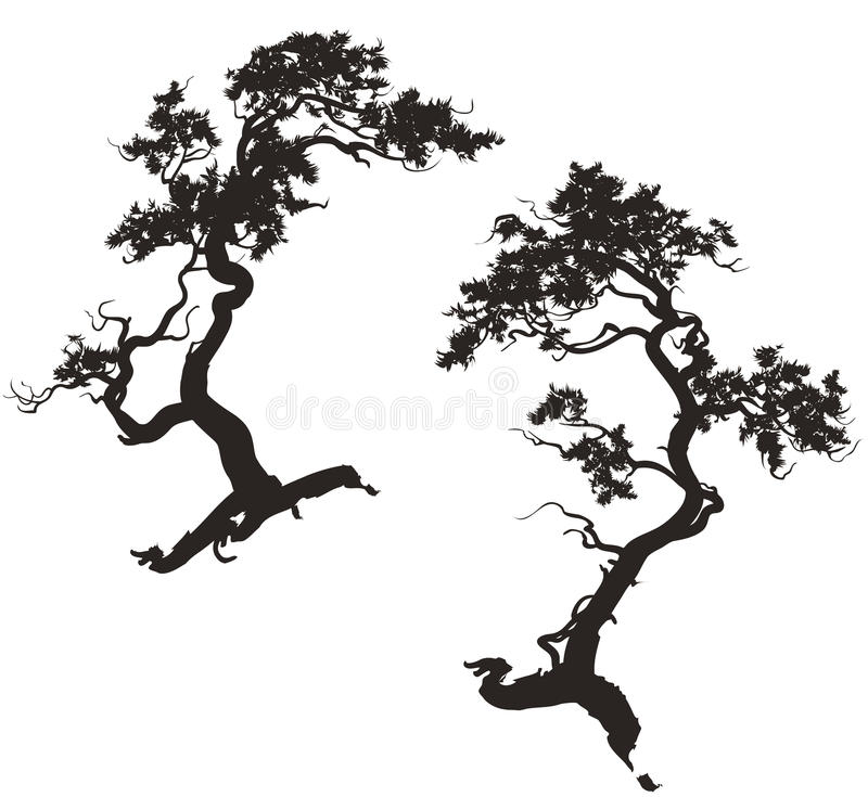Silhouettes des pins illustration stock