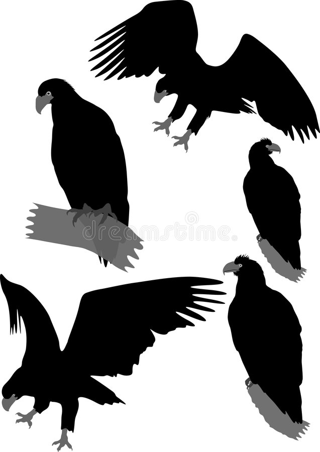 Silhouettes of eagles stock illustration