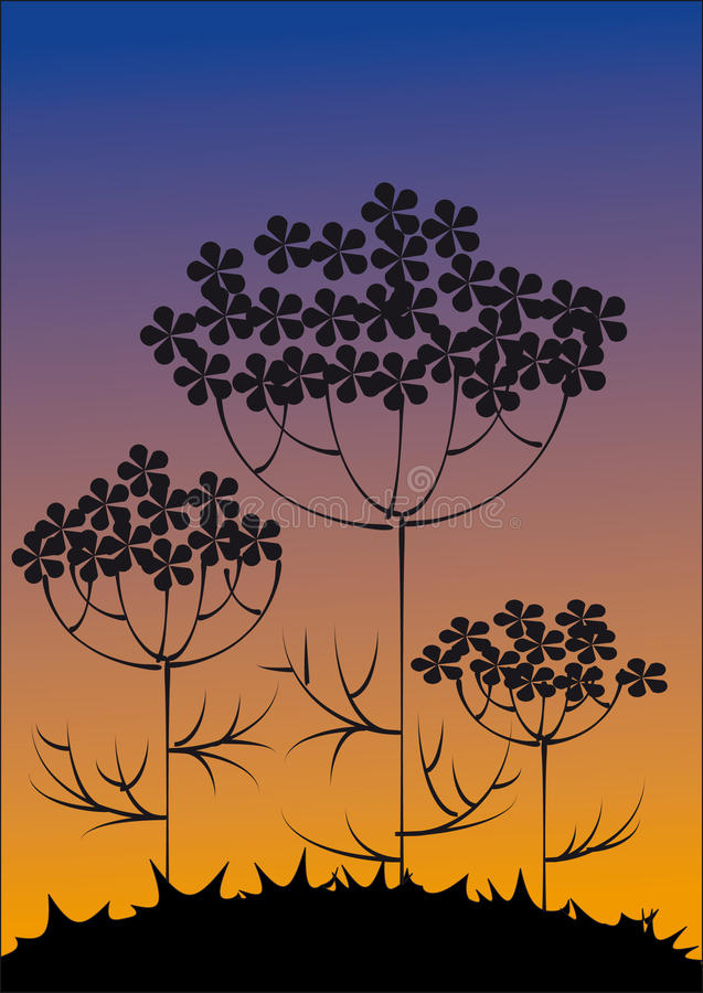 Download Silhouettes Of Flowers Against The Evening Sky Stock Vector - Image: 11169207