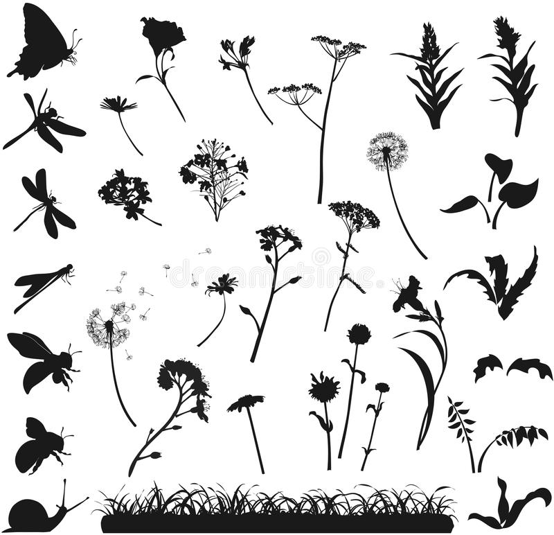 Download Silhouettes Of Flowers, Grass And Insects Stock Vector - Illustration: 37779359
