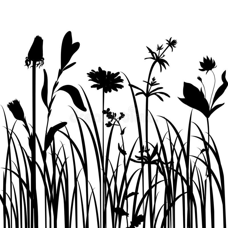 Download Silhouettes  Of Flowers And Grass Stock Vector - Illustration: 32790548