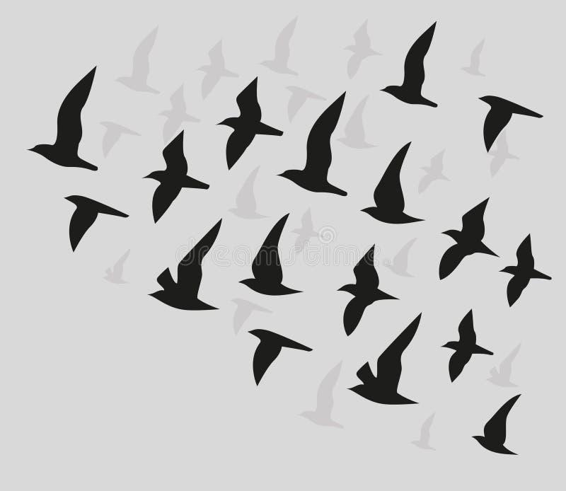 Silhouettes of flying birds stock illustration