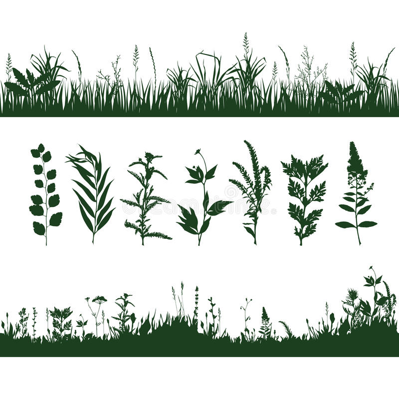 Silhouettes grass vector illustration