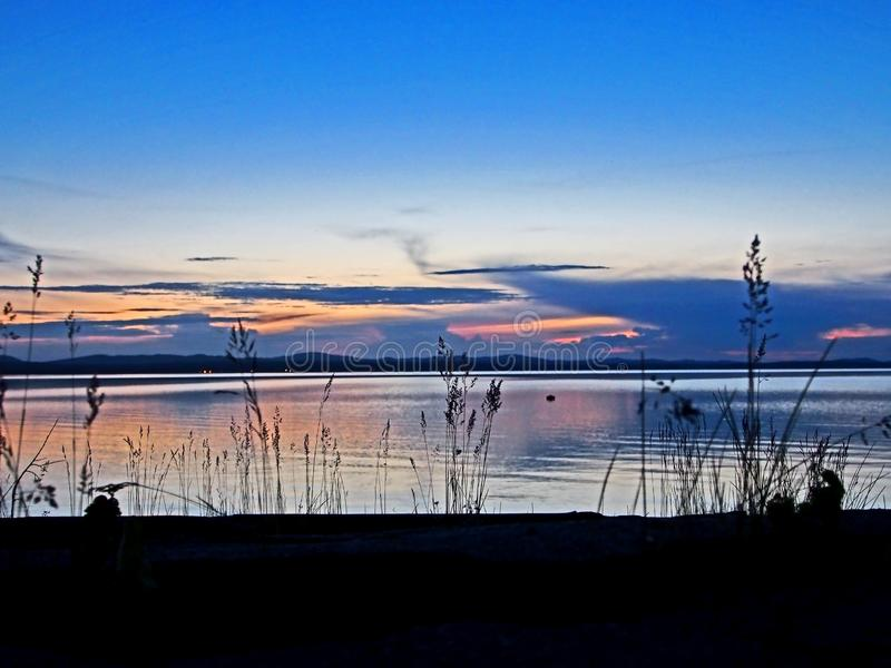 Silhouettes of grass on the shore of the evening lake with light smoky clouds over the horizon. The southern Urals, blue hour royalty free stock image