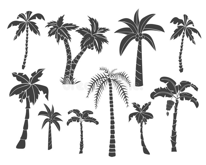 Silhouettes of hand drawn palms trees. stock illustration