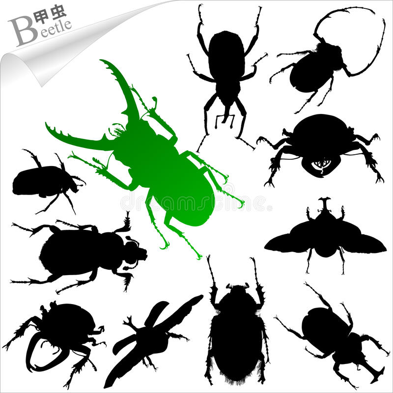 Vector silhouettes of insects - beetle royalty free stock photos