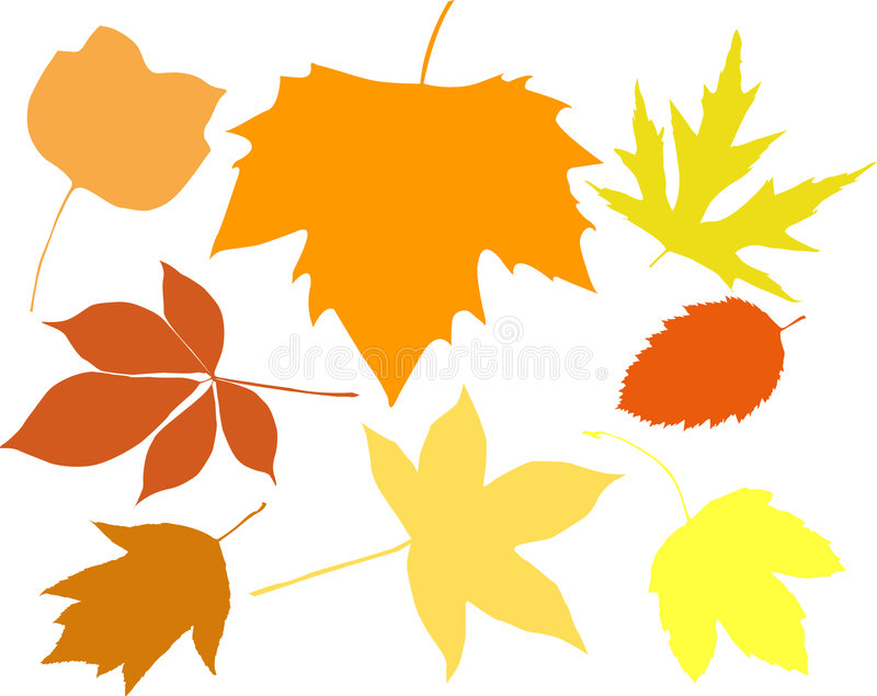 Silhouettes of leaves stock illustration