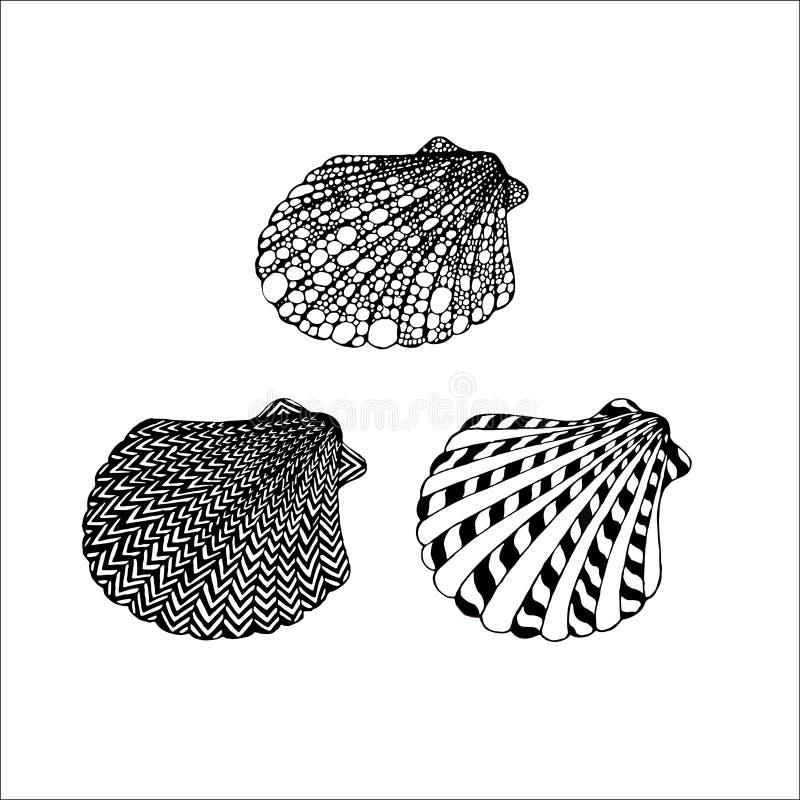 Silhouettes linéaires de noir de vecteur des coquillages sur un backgrou blanc illustration libre de droits
