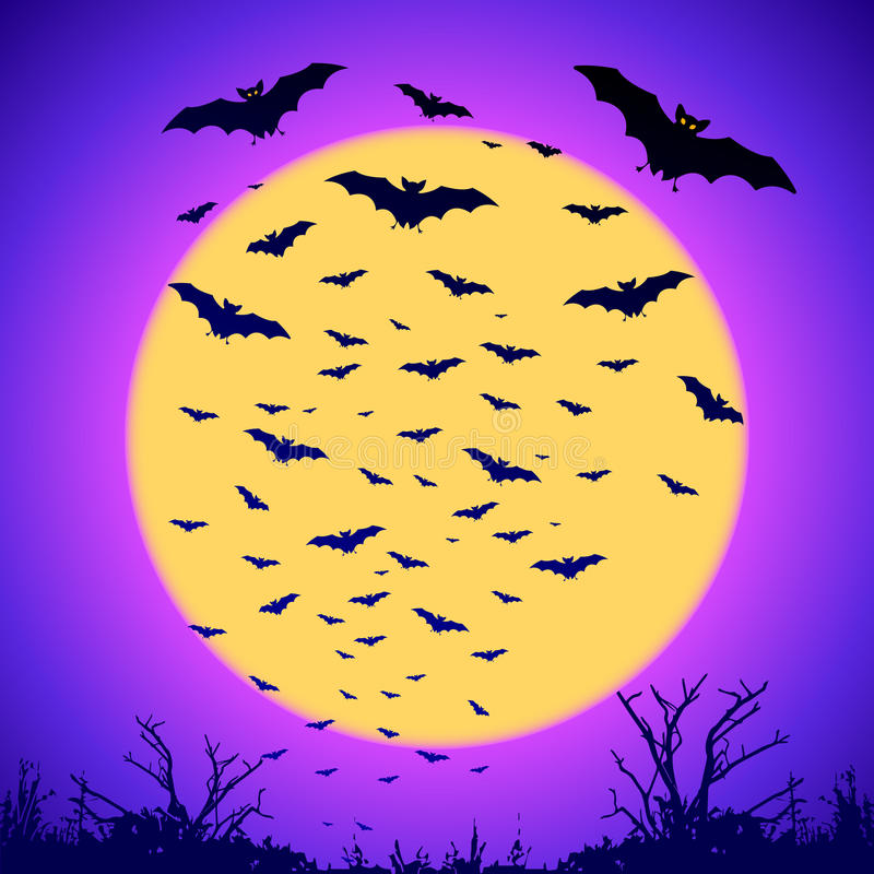Silhouettes noires de battes sur la grande lune jaune à illustration libre de droits