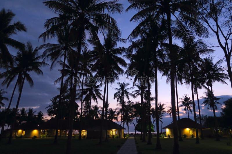 Silhouettes noires de paumes au fond de ciel de coucher du soleil avec de petites huttes et à la lumière dans les fenêtres sous d photos libres de droits