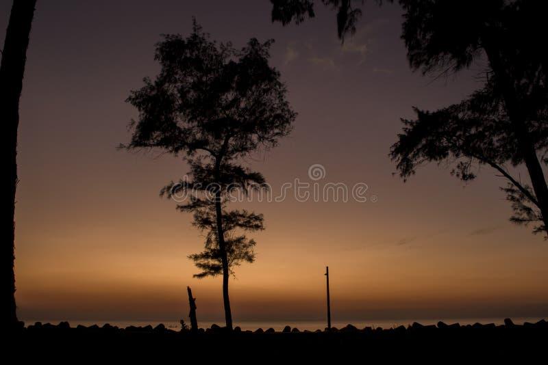 Silhouettes noires des arbres et un courrier de lampe sur le remblai avec des tetrapods sur le fond de la mer sous une orange lum photographie stock libre de droits