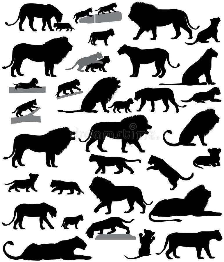 Free Silhouettes Of Lions And Lion Cubs Stock Photography - 104237372