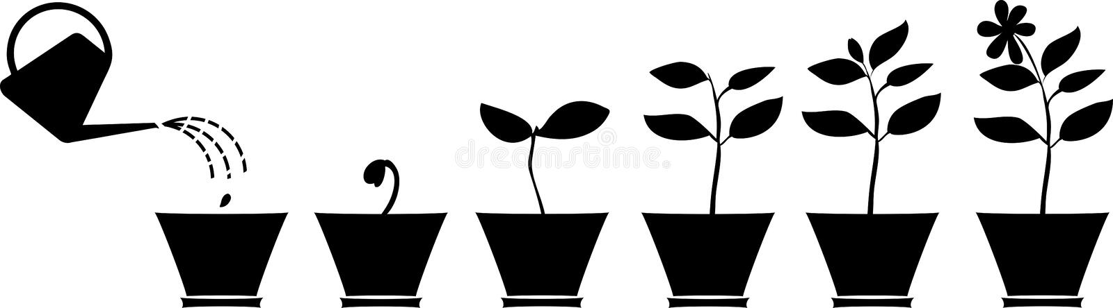 Silhouettes of plants in the flowerpot. Scheme of flower growth. Silhouettes of plants in the flowerpot stock illustration