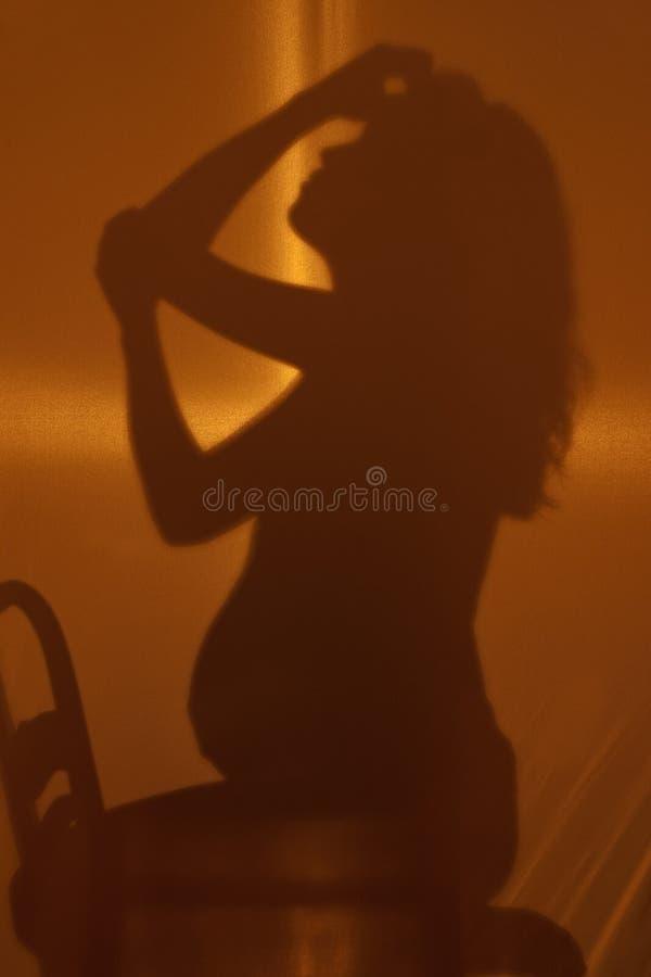 silhouettes tankar royaltyfri foto