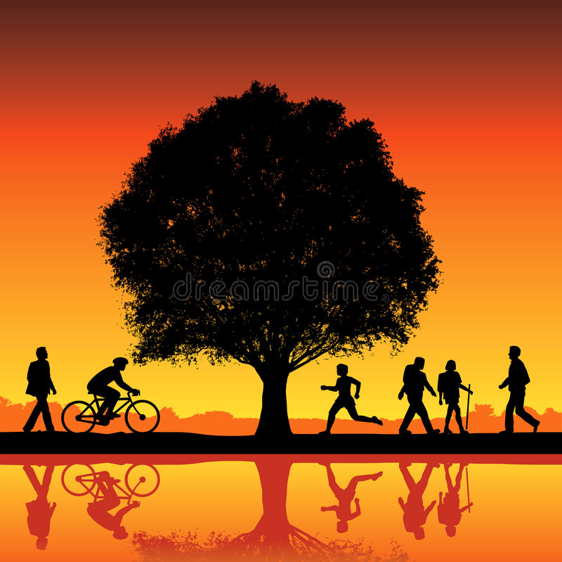silhouettes treen under stock illustrationer
