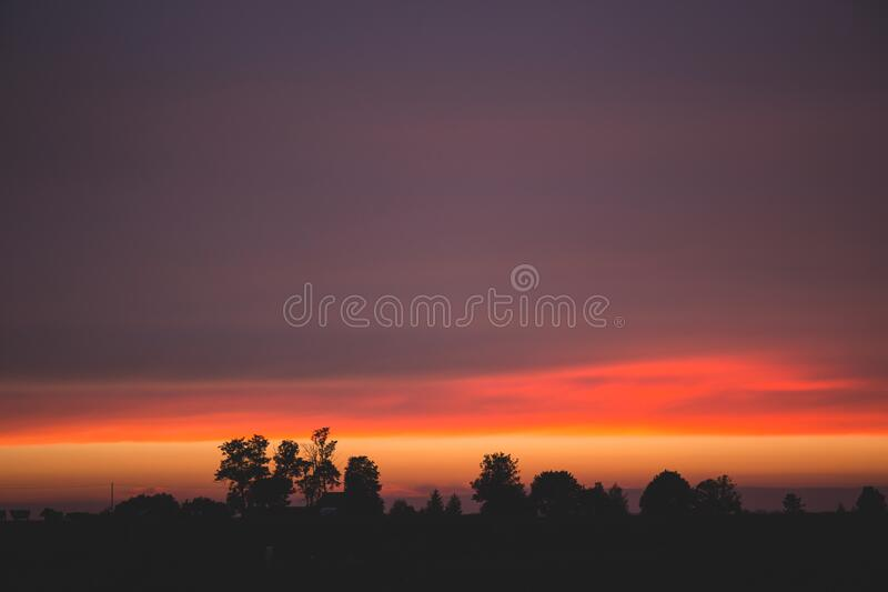 Silhouettes Of Trees During Dawn Free Public Domain Cc0 Image
