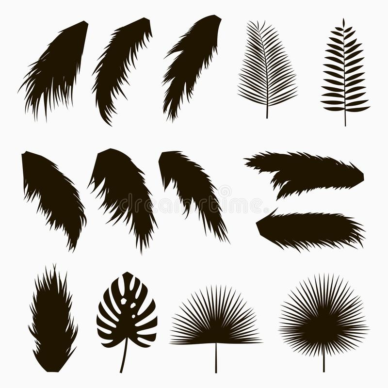Silhouettes of tropical and palm leaves. Set of isolated jungle exotic plants leaf. Hand drawn monochrome illustration. Vector royalty free illustration