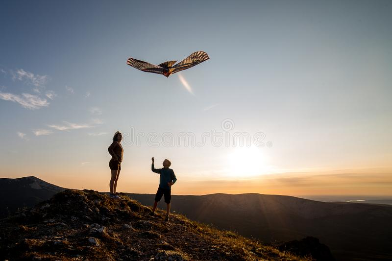 Boy and girl fly a kite royalty free stock photos