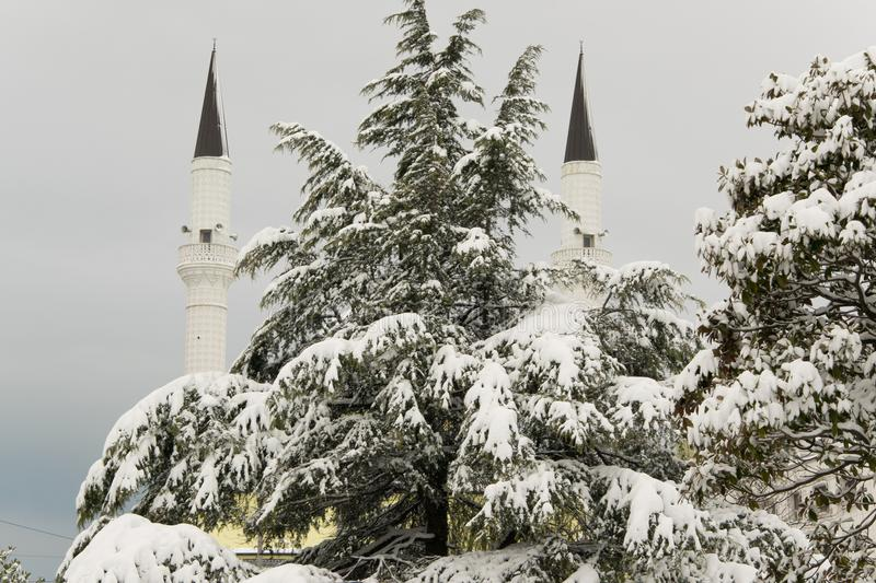 Silhouettes of the two minarets of the mosque hidden by the pine covered with snow royalty free stock photos