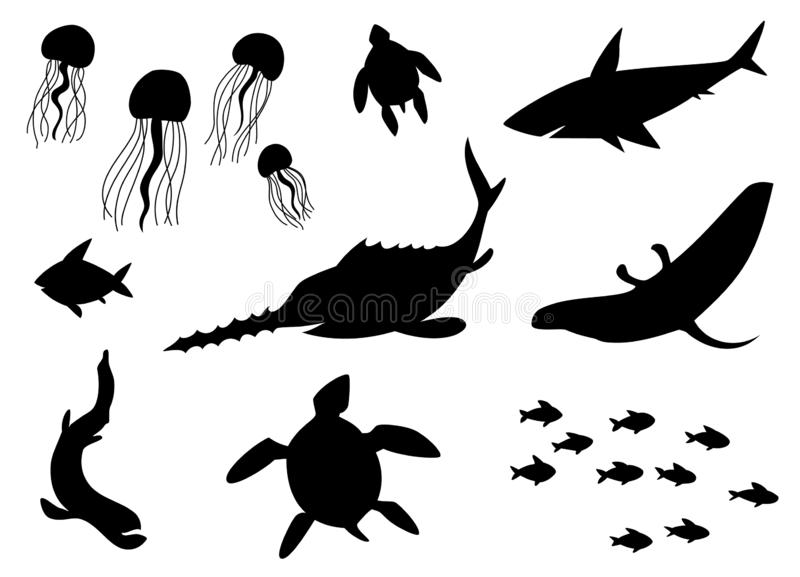 Silhouettes Vector of Fish, Sea life, Marine life, seafood. A set of cute icon collection isolated on white background. royalty free illustration