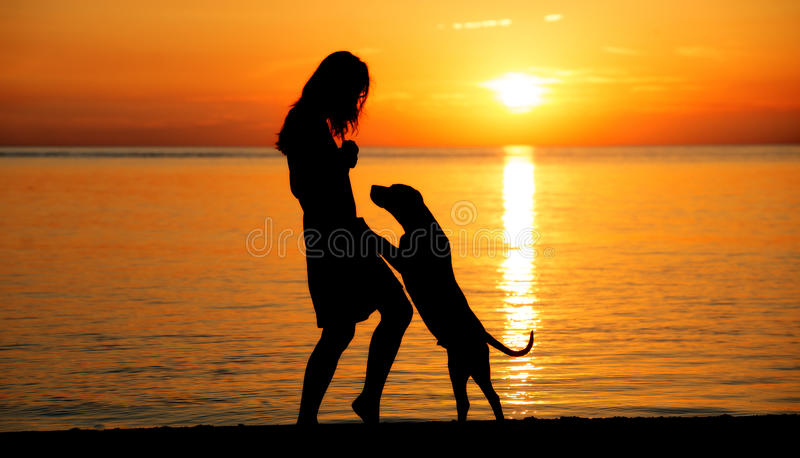 Silhouettes of a woman and dog at the beach stock photography