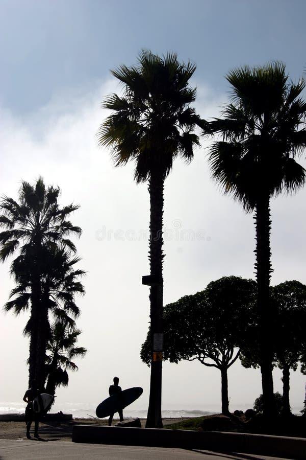 Silhouettesurfare Fotografering för Bildbyråer
