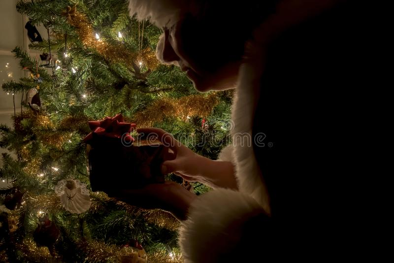 Silhouettte de señora Claus con el paquete por el árbol imagen de archivo