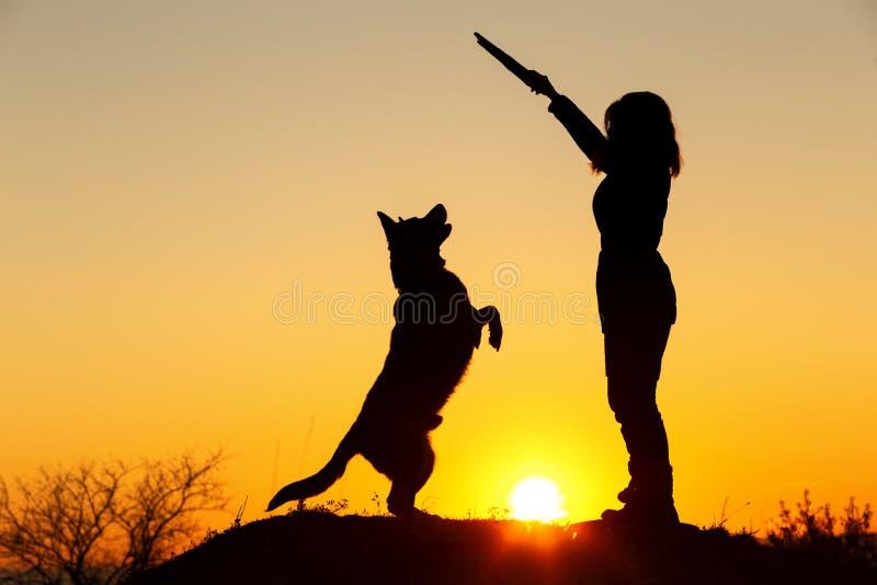 Silhouetvrouw die met een hond op het gebied bij zonsondergang lopen, huisdier die omhoog voor een houten stok in de hand van het royalty-vrije stock foto's