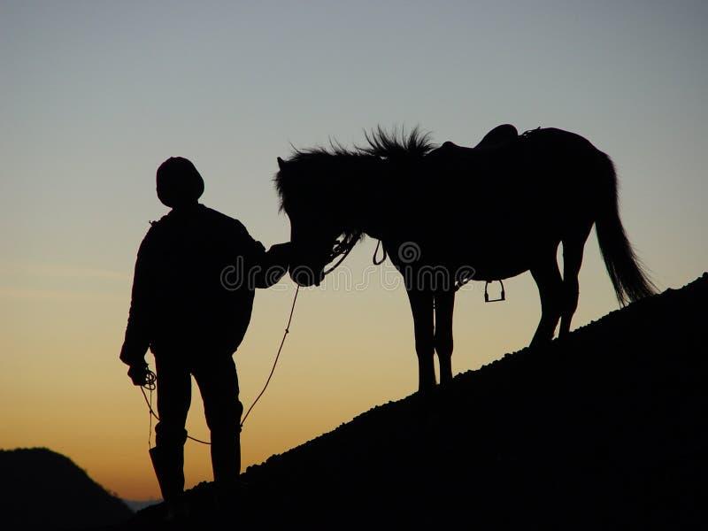 Silhoutte dell'uomo e del cavallo immagine stock