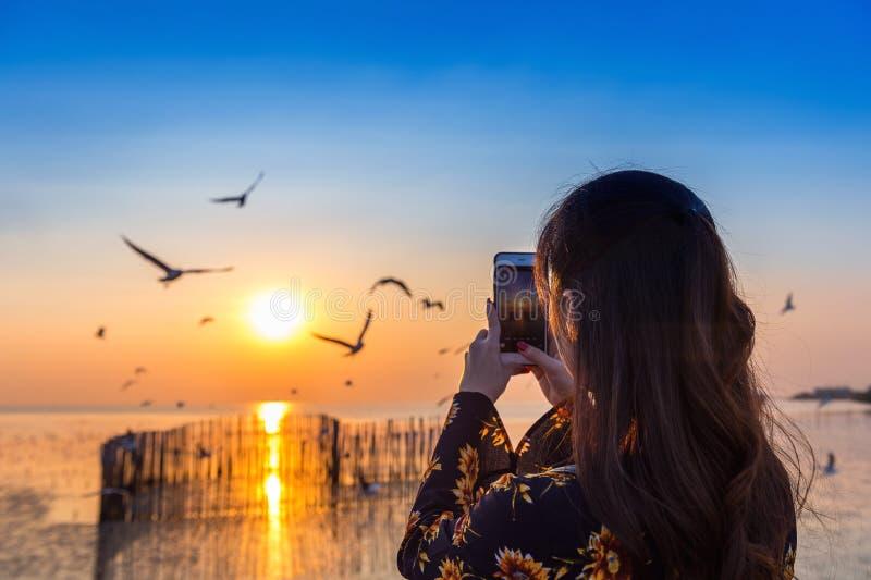 Silhoutte di volata e della giovane donna degli uccelli che prendono una foto al tramonto fotografia stock libera da diritti