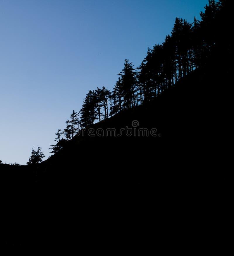 Silhoutte gráfico de los árboles que corren abajo de canto hacia el océano foto de archivo