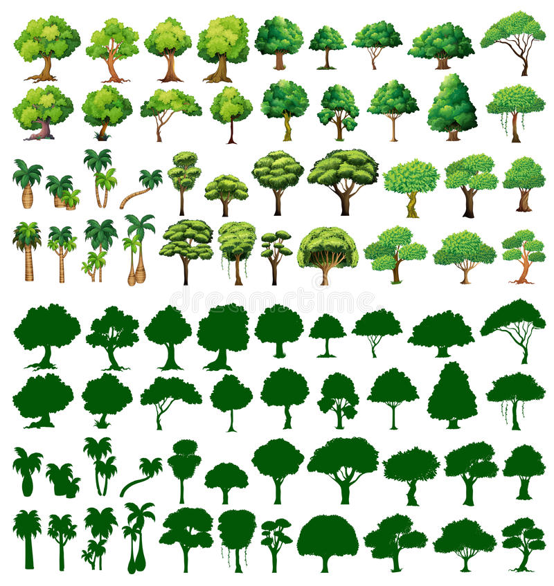 Free Silhoutte Of Trees Royalty Free Stock Photos - 47067688