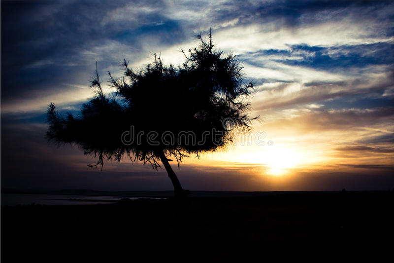 Silhoutte. This shot was taken in wadi el rayan , Egypt stock image
