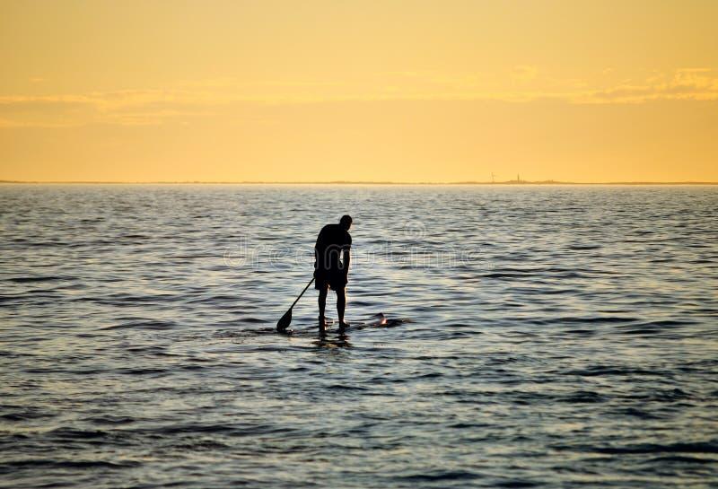 Silhoutte van tribune die omhoog surfer paddelen stock afbeeldingen
