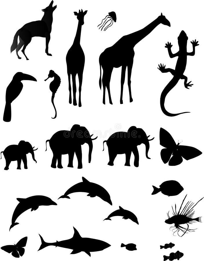 Silhueta animal ilustração do vetor