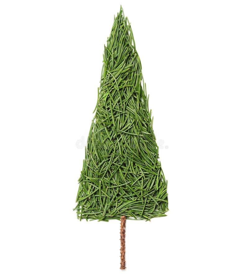 Silhueta da árvore de abeto do Natal feita de agulhas do pinho em um fundo branco foto de stock