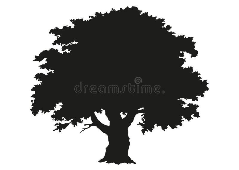 Silhueta da árvore Desenho ilustração do vetor