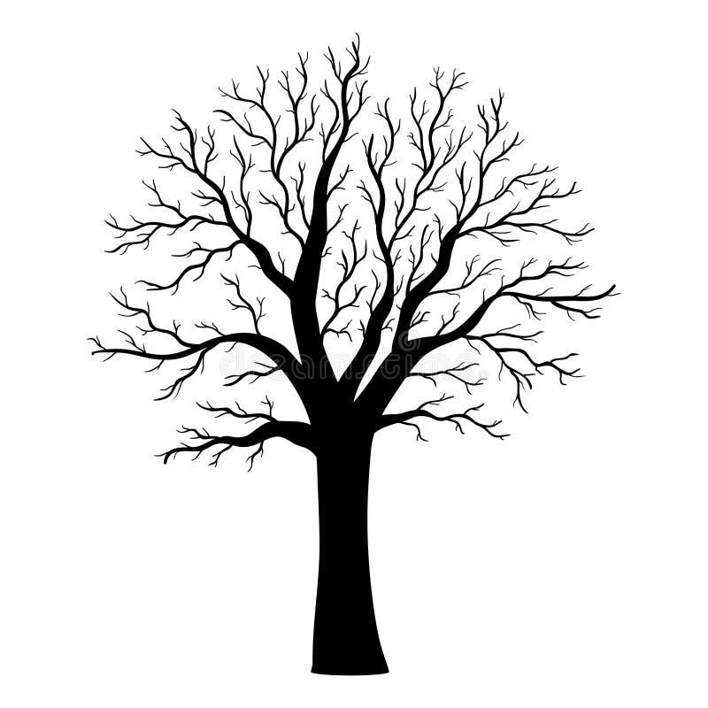 Silhueta da árvore do vetor no branco fotografia de stock