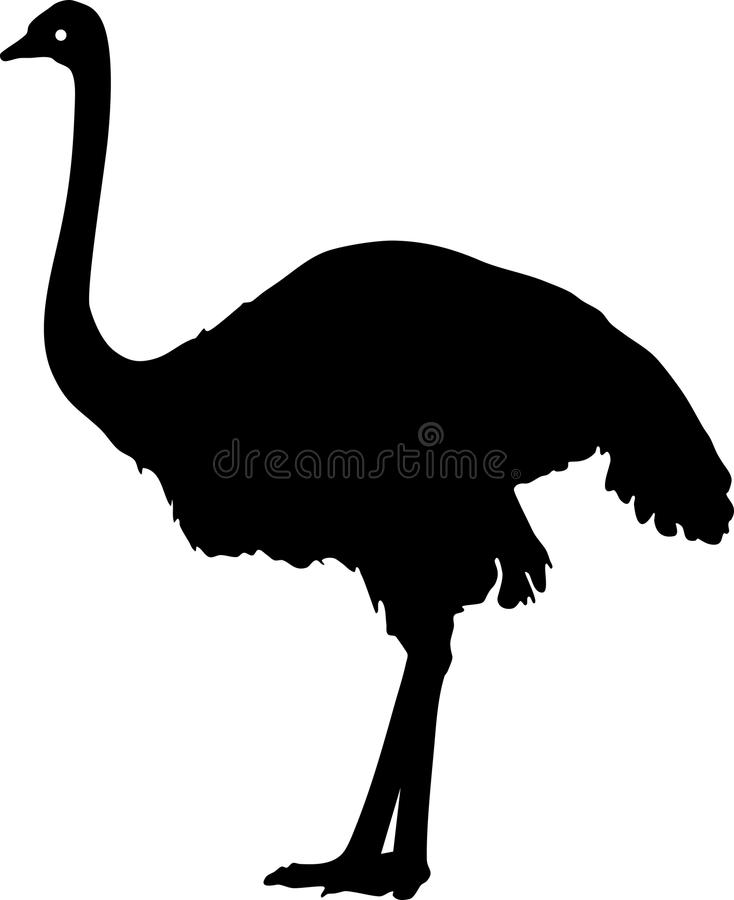 Silhueta da avestruz comum ilustração stock