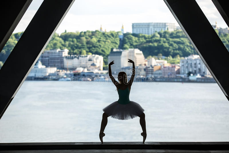 Silhueta da bailarina graciosa no tutu branco foto de stock royalty free