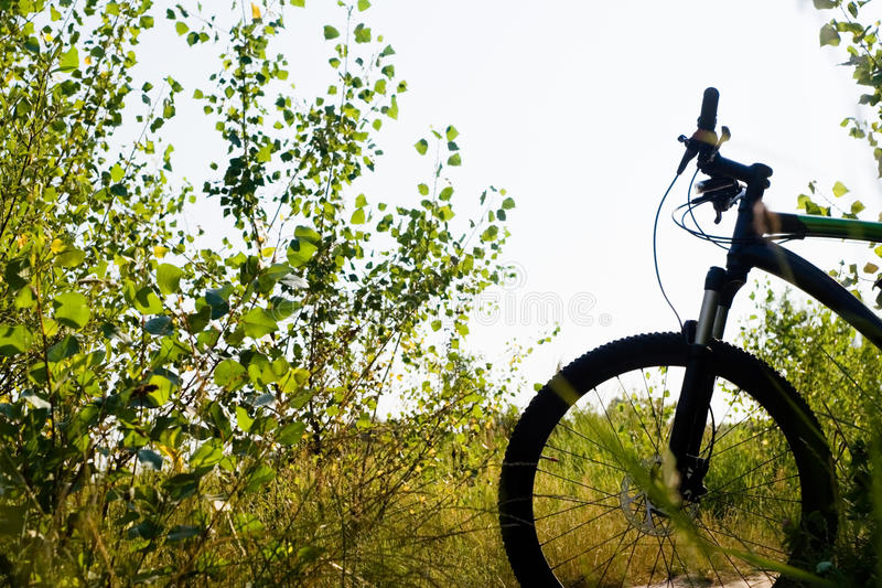 Silhueta da bicicleta de montanha fotografia de stock royalty free