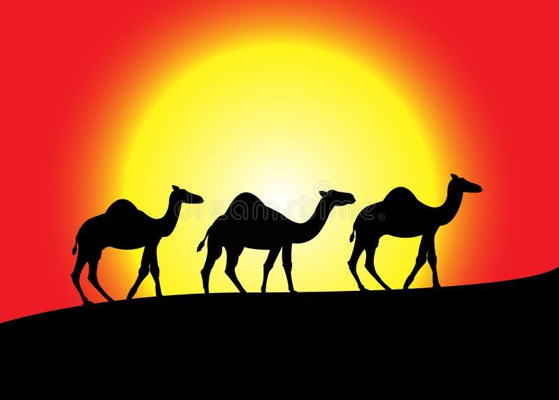 Silhueta da caravana do camelo no por do sol ilustração do vetor
