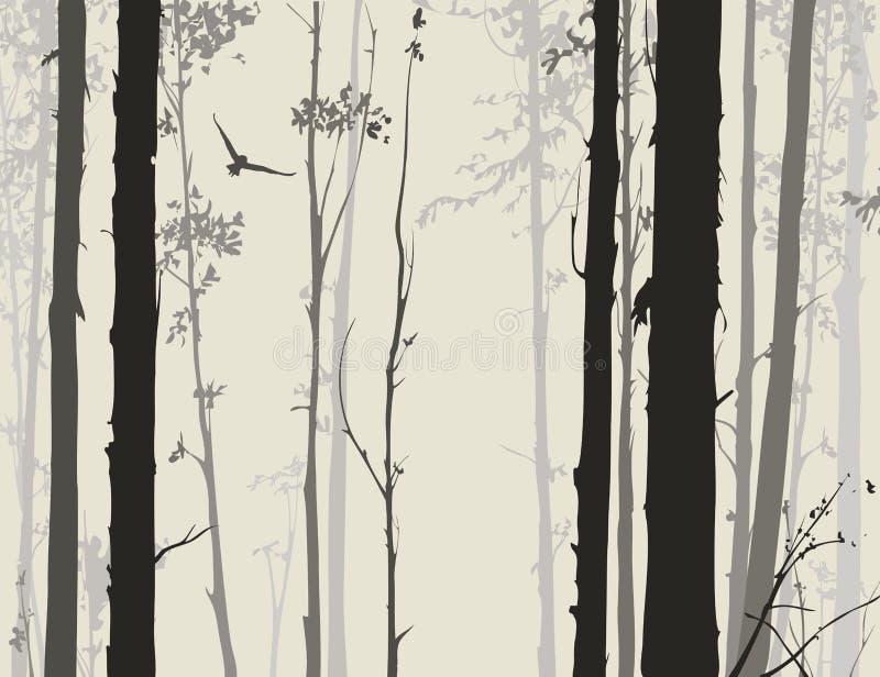 Silhueta da floresta decíduo com uma coruja 1 do voo