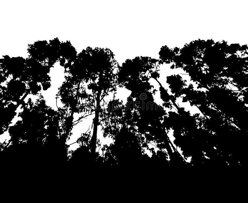 Silhueta da floresta isolada no vetor branco do fundo ilustração royalty free